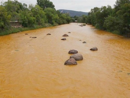 The Animas River after the spill